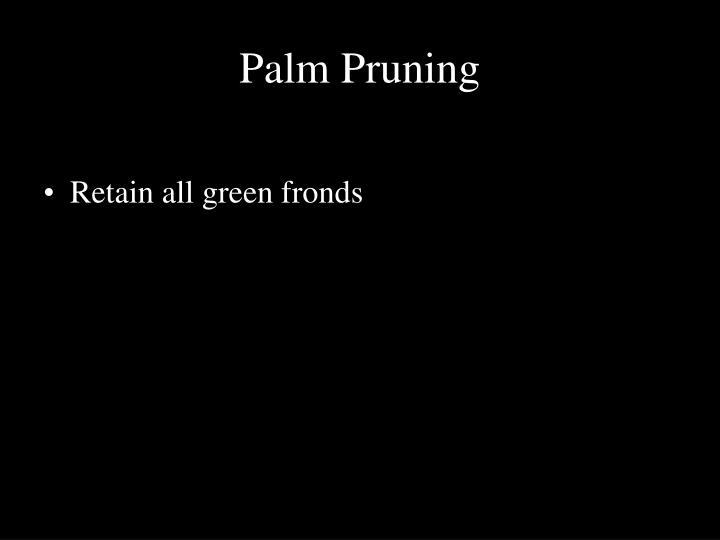 Palm Pruning