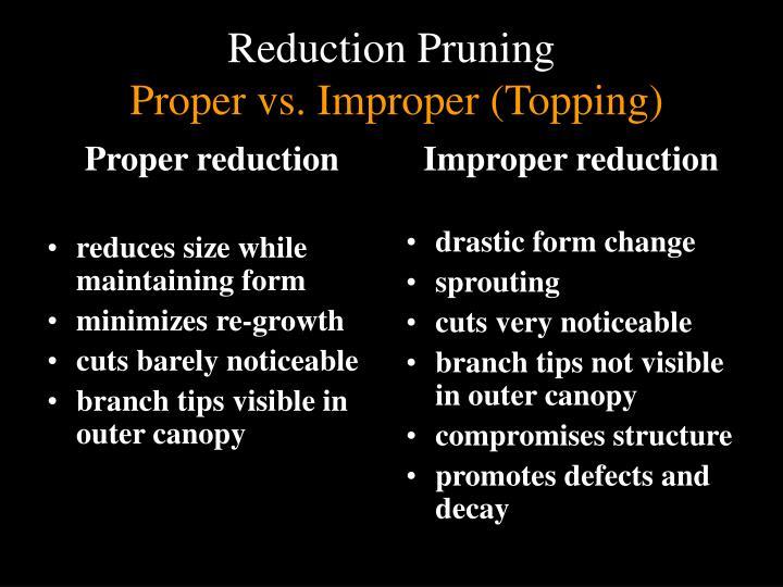 Proper reduction