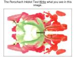 the rorschach inkblot test write what you see in this image