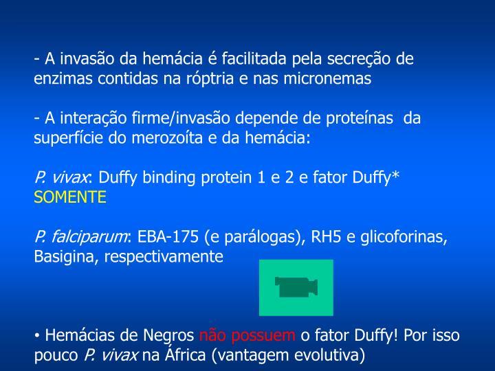 - A invasão da hemácia é facilitada pela secreção de  enzimas contidas na róptria e nas micronemas