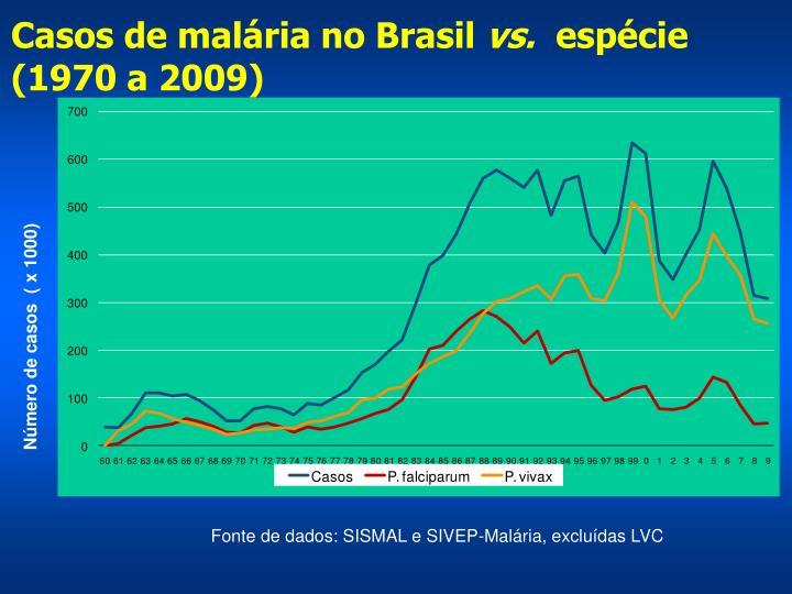 Casos de malária no Brasil