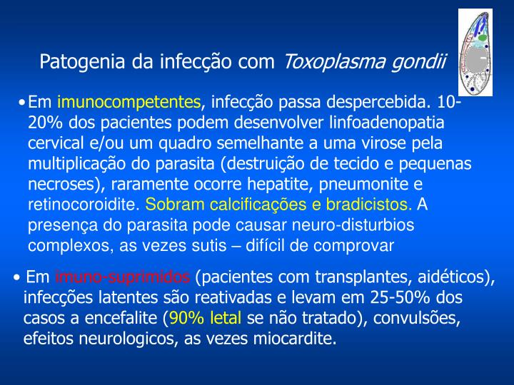 Patogenia da infecção com
