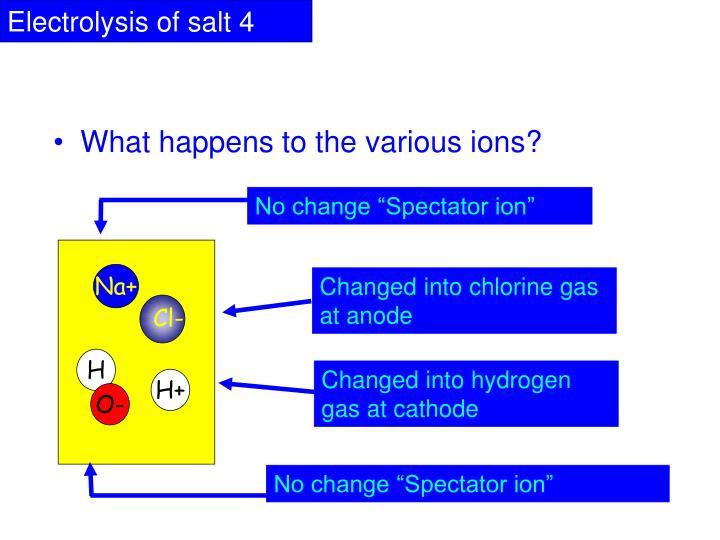"No change ""Spectator ion"""