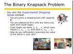 the binary knapsack problem