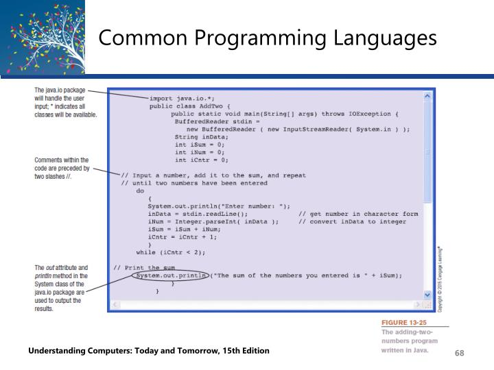 Common Programming Languages