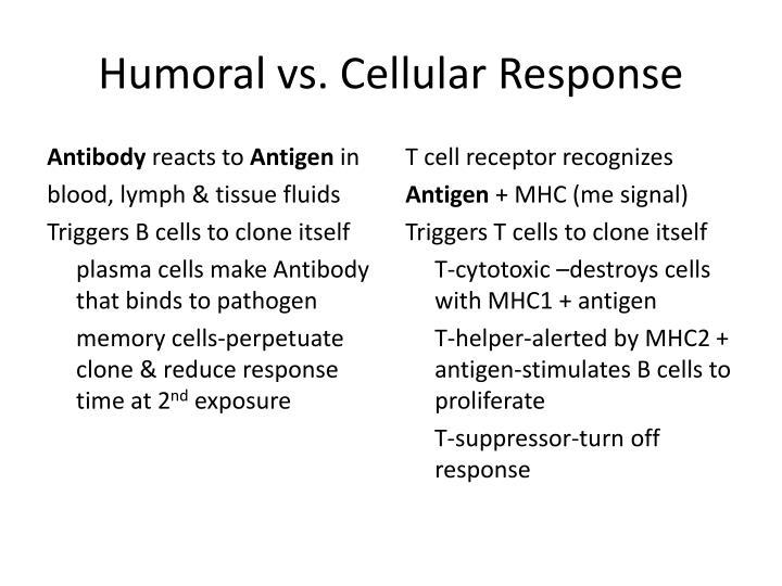 Humoral vs. Cellular Response