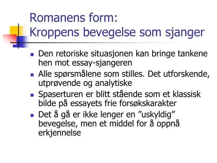 Romanens form: