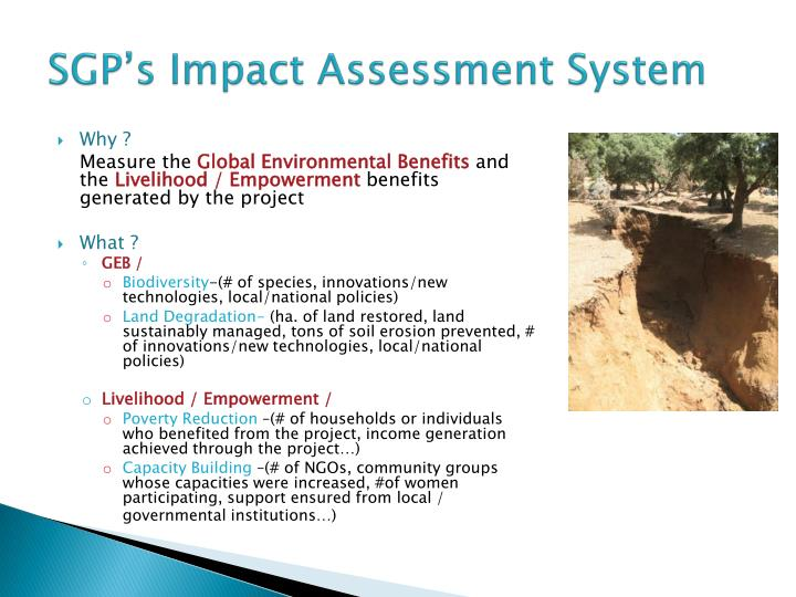SGP's Impact Assessment System