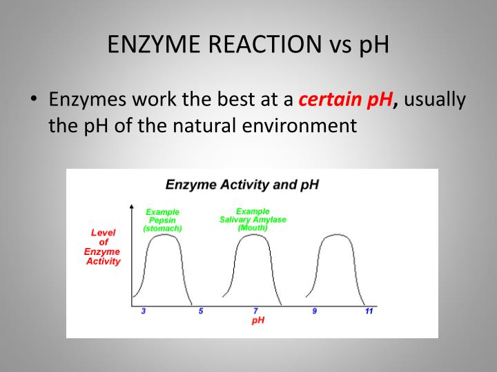 ENZYME REACTION vs pH