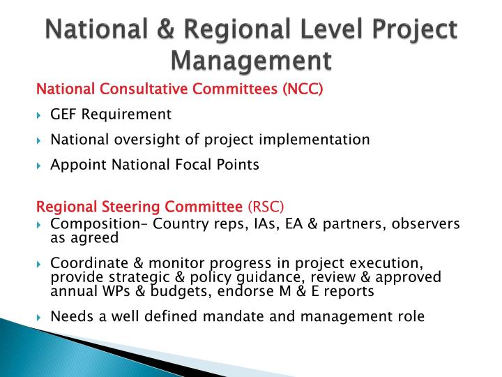 National & Regional Level Project Management