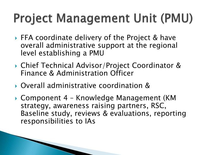 Project Management Unit (PMU)