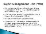 project management unit pmu