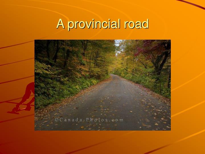 A provincial road
