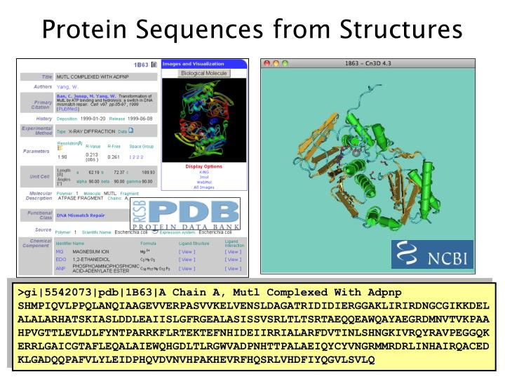 Protein Sequences from Structures