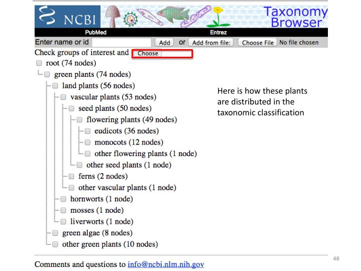 Here is how these plants are distributed in the taxonomic classification