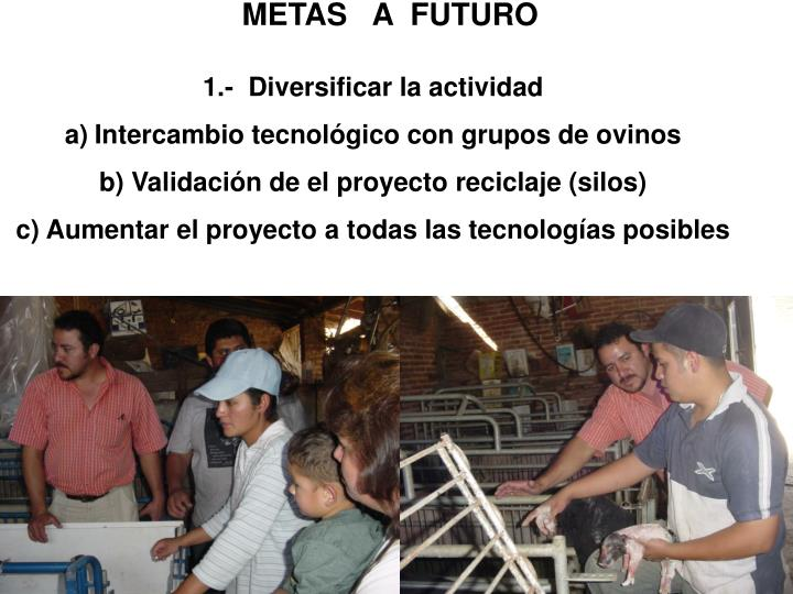 METAS   A  FUTURO