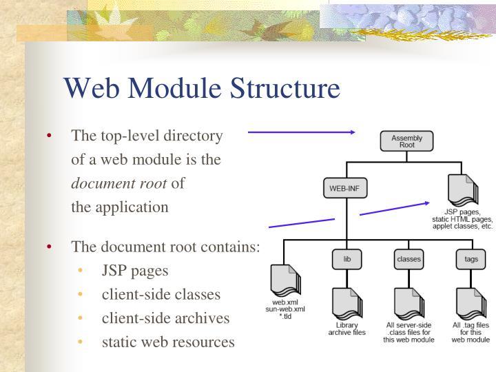 Web Module Structure