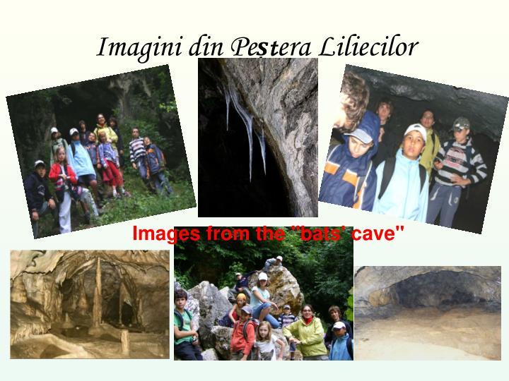 Imagini din Pe
