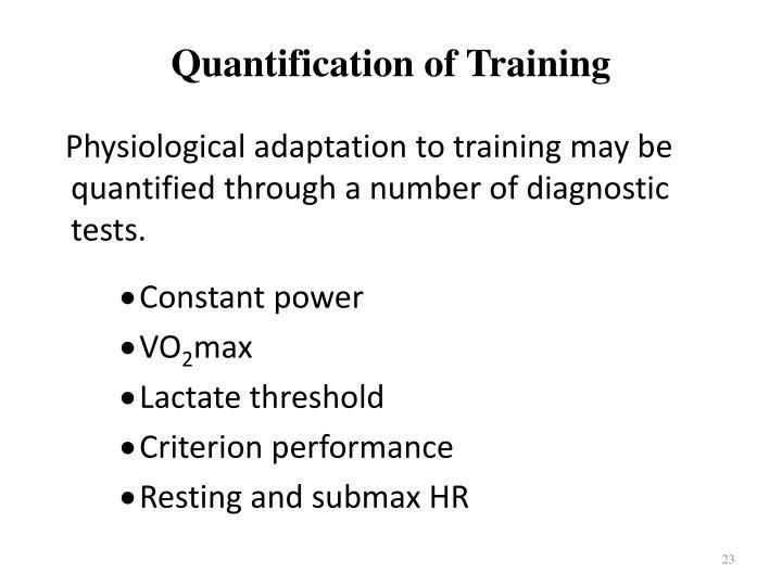 Quantification of Training