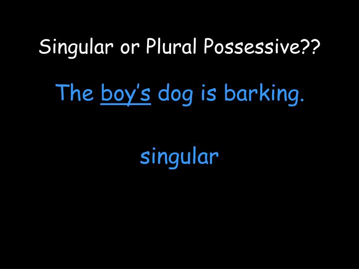 Singular or Plural Possessive??