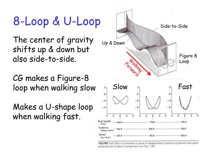 8-Loop & U-Loop