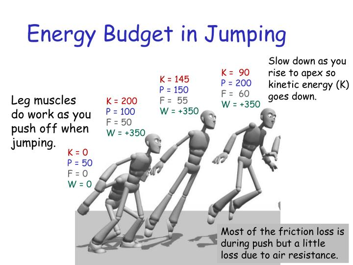 Energy Budget in Jumping