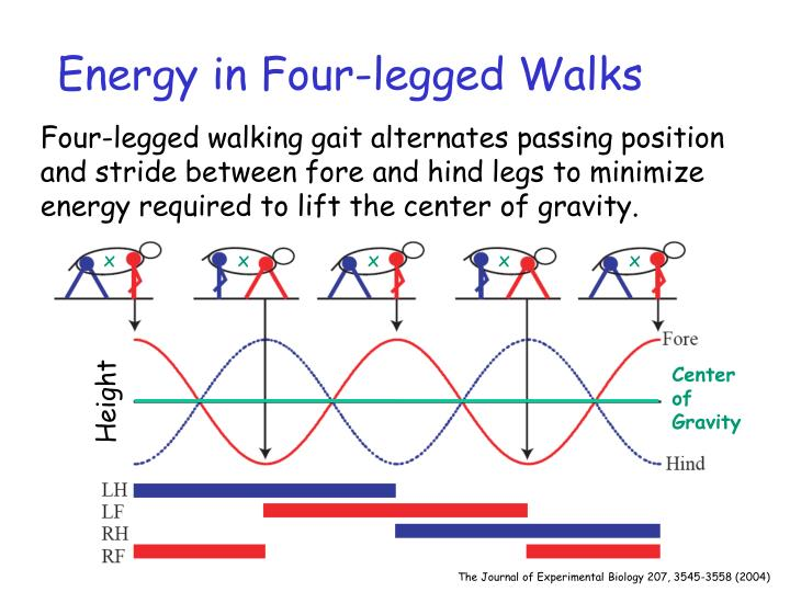 Energy in Four-legged Walks