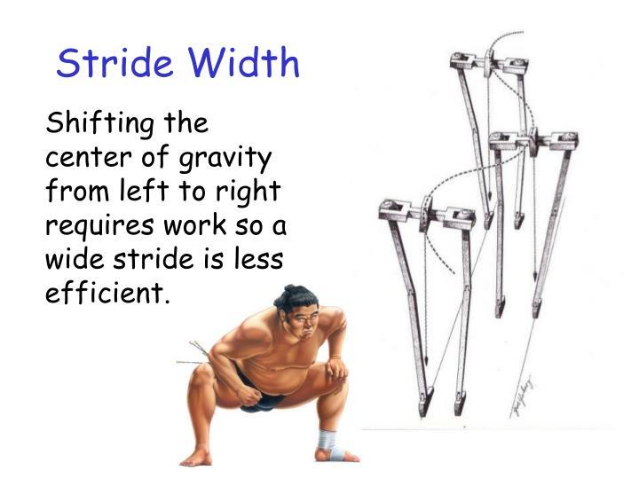 Stride Width