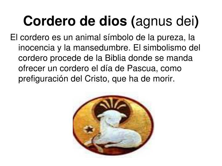 Cordero de dios (