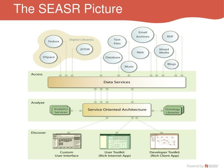 The SEASR Picture
