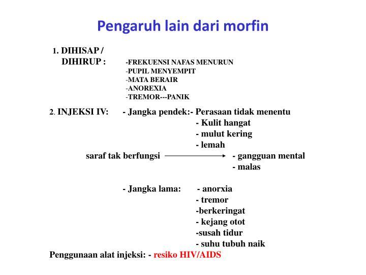 Pengaruh lain dari morfin