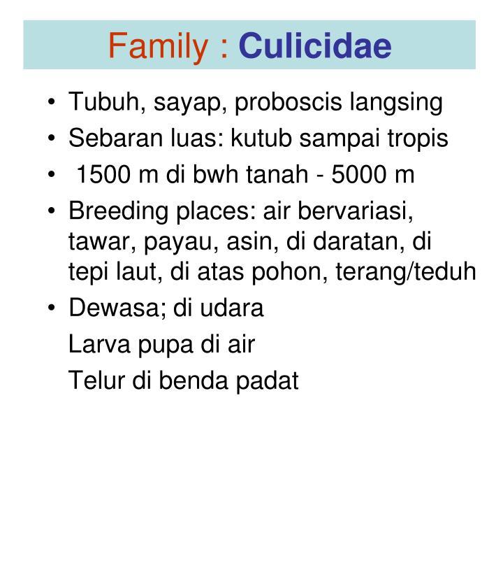 Family :