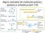 alguns exemplos de mol culas polares apolares e anfip ticas ph 7 0