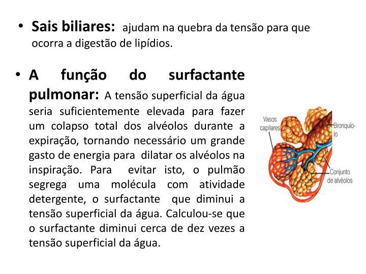 A função do surfactante pulmonar: