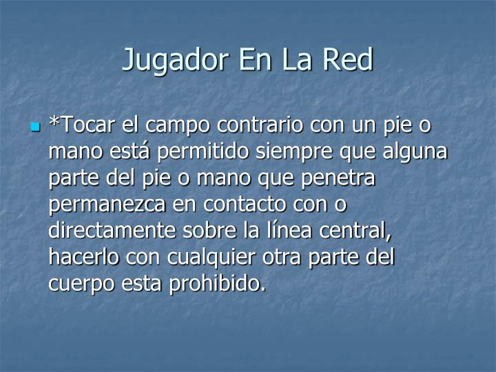 Jugador En La Red