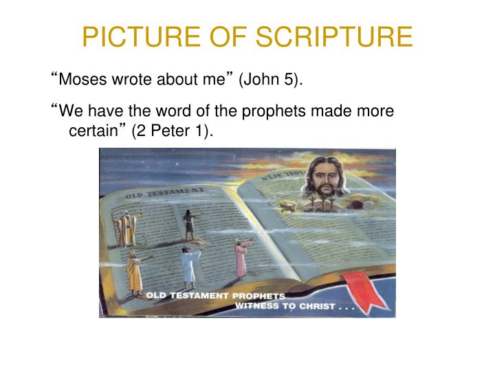 PICTURE OF SCRIPTURE