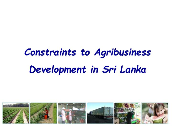 Constraints to agribusiness development in sri lanka