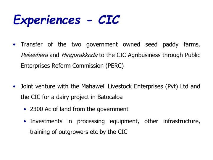 Experiences - CIC
