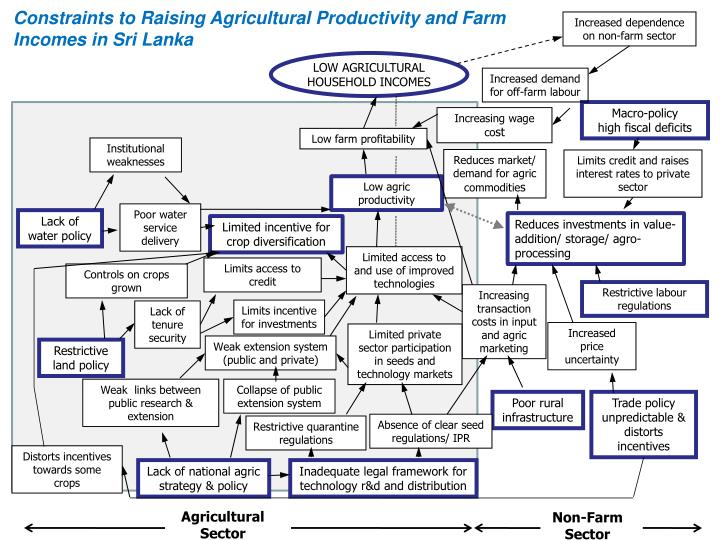 Constraints to Raising Agricultural Productivity and Farm