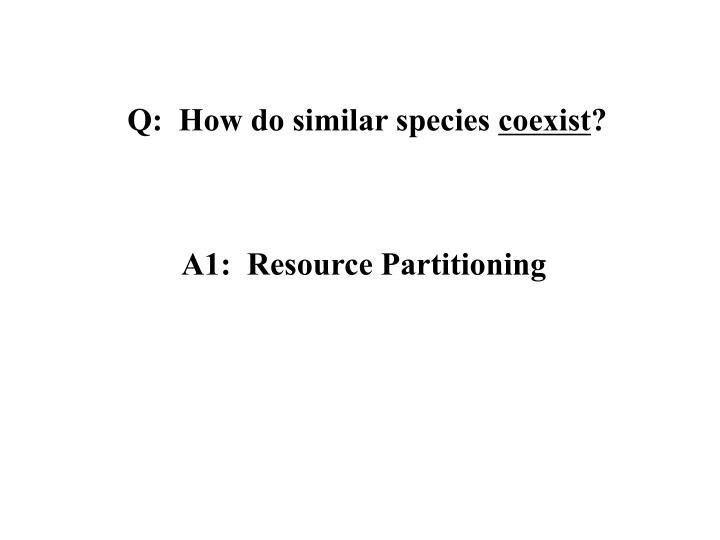 Q:  How do similar species