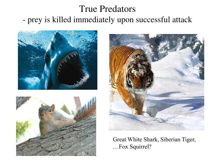True Predators