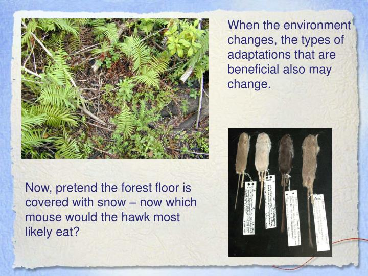 When the environment changes, the types of adaptations that are beneficial also may change.