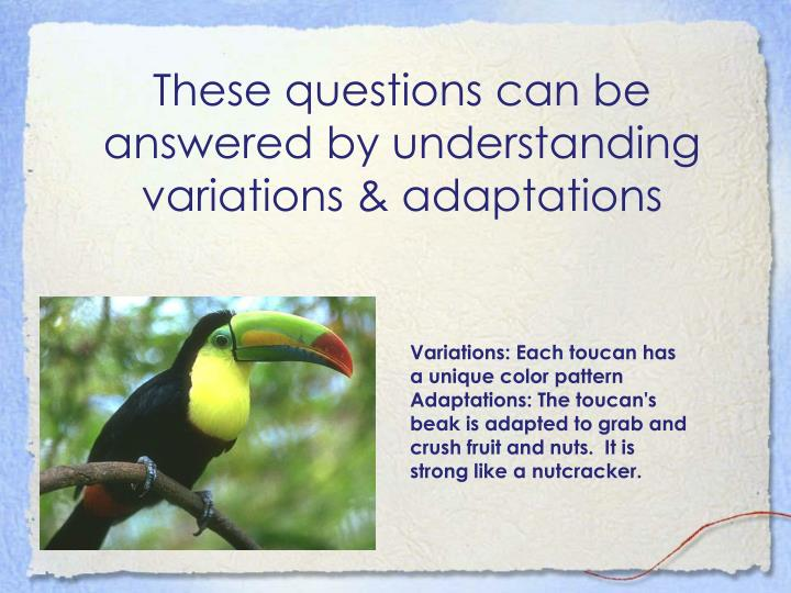 These questions can be answered by understanding variations & adaptations