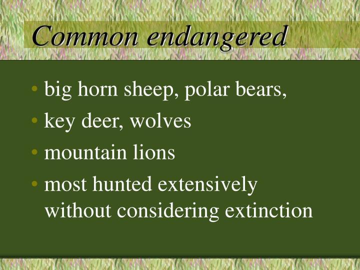 Common endangered