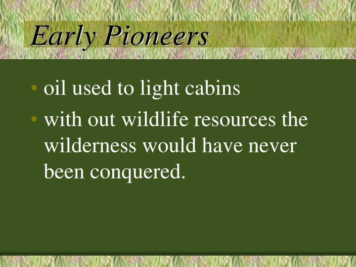 Early Pioneers