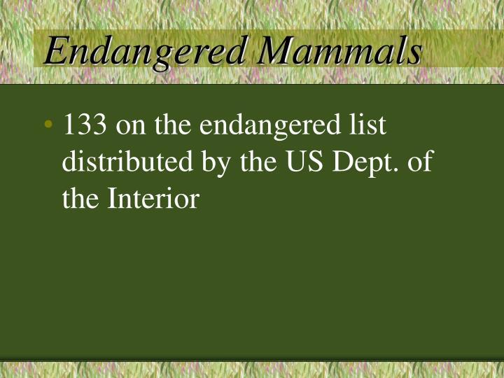 Endangered Mammals