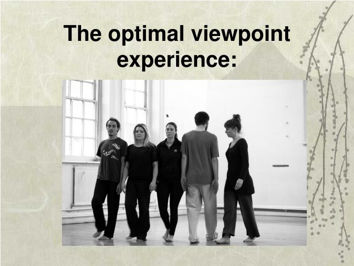 The optimal viewpoint experience: