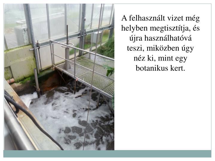A felhasznlt vizet mg helyben megtiszttja, s jra hasznlhatv teszi, mikzben gy nz ki, mint egy botanikus kert.