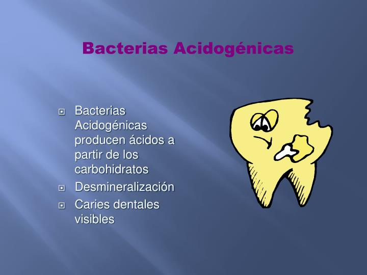 Bacterias Acidogénicas