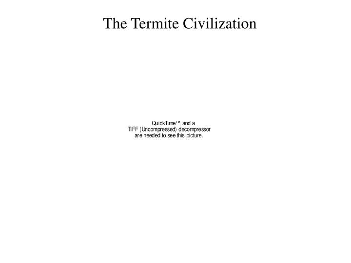 The Termite Civilization